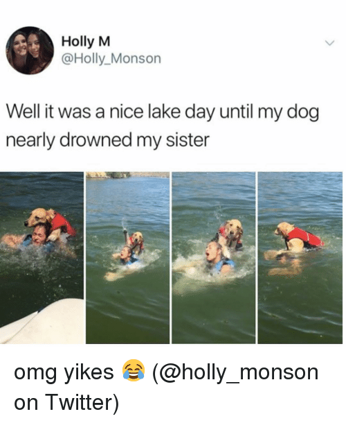 Memes, Omg, and Twitter: Holly M  @Holly_Monson  Well it was a nice lake day until my dog  nearly drowned my sister omg yikes 😂 (@holly_monson on Twitter)