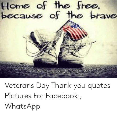 home of the because of the brave veterans day thank you