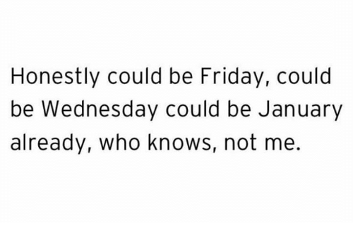 Friday, Memes, and Wednesday: Honestly could be Friday, could  be Wednesday could be January  already, who knows, not me.