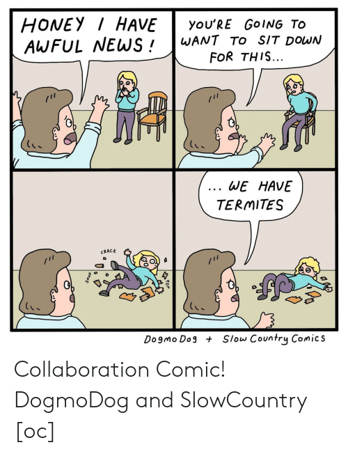 Comics, Dog, and Honey: HONEY HAVEyoU'RE GoING TO  AWFUL WEWS!WANT TO sIT DowN  FOR THIS...  0  6  WE HAVE  TERMITES  CRACK  Dogmo Dog  Slow Country Comics Collaboration Comic! DogmoDog and SlowCountry [oc]