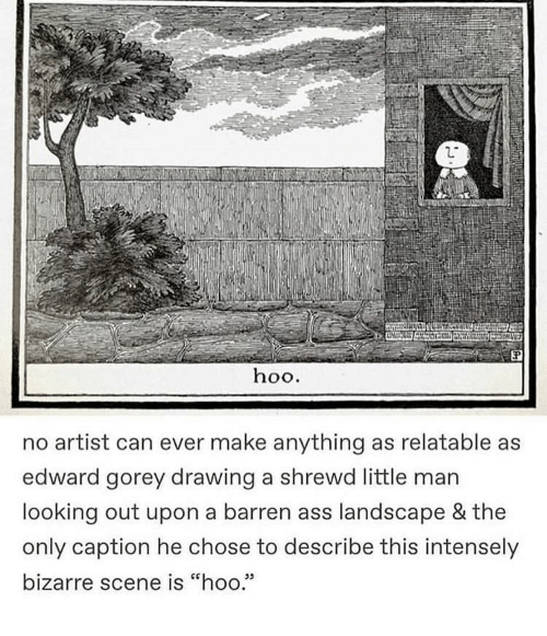 """Bizarre: hoo.  no artist can ever make anything as relatable as  edward gorey drawing a shrewd little man  looking out upon a barren ass landscape & the  only caption he chose to describe this intensely  bizarre scene is """"hoo.""""  05"""