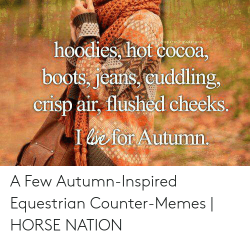 Fall Meme: hoodies hot cocoa  boots, jeans, cuddling,  crisp air, flushed cheeks  b for Autumn. A Few Autumn-Inspired Equestrian Counter-Memes | HORSE NATION