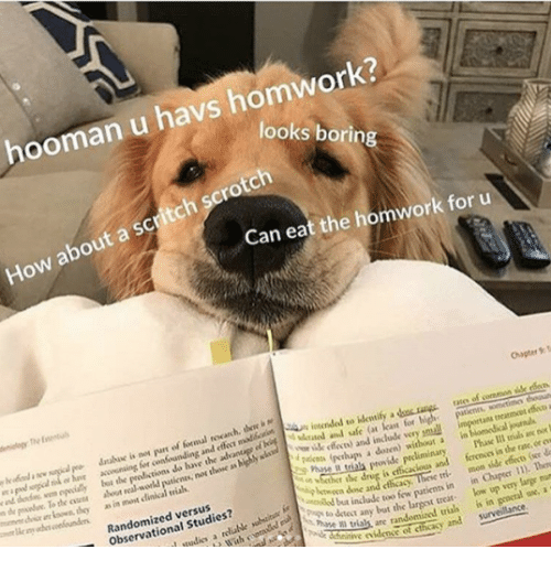 Clinical: hooman u havs homwork?  looks borin  How about a scritch scrotch  Can eat the homwork for u  Chaper T  atee of coremon sille rdo  accwining for confounding and e madloctSn in  lybt the  the oen about real workd  i  loan for  y ik feces) and include very pmuall  putienes, nos thone as highly sla  treatmcet effe a  i are  as in most clinical vials  r  pakos (pthups a dozen) without a in  Phase Il trials an no  r the drug is efficacious and ferenos in the rate, or ew  Randomized versus  Observational Studies?  btwoen done and cthcacy  tinow patienn in in Cher ). Ten  any bat the largest treat low up very large mun  as are randomized trias is in geocral ox, a  tie iden of cthcasy and survelance.