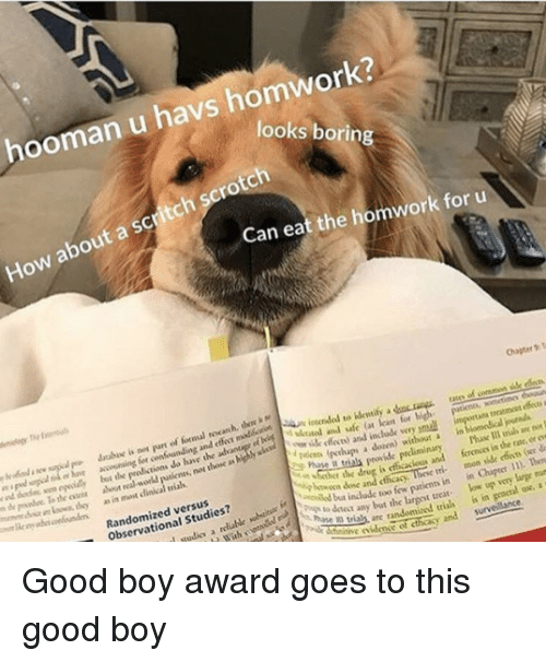 Clinical: hooman u havs homwork?  looks borin  How about a scritch scrotch  Can eat the homwork for u  Chaper T  atee of coremon sille rdo  accwining for confounding and e madloctSn in  lybt the  the oen about real workd  i  loan for  y ik feces) and include very pmuall  putienes, nos thone as highly sla  treatmcet effe a  i are  as in most clinical vials  r  pakos (pthups a dozen) without a in  Phase Il trials an no  r the drug is efficacious and ferenos in the rate, or ew  Randomized versus  Observational Studies?  btwoen done and cthcacy  tinow patienn in in Cher ). Ten  any bat the largest treat low up very large mun  as are randomized trias is in geocral ox, a  tie iden of cthcasy and survelance. Good boy award goes to this good boy