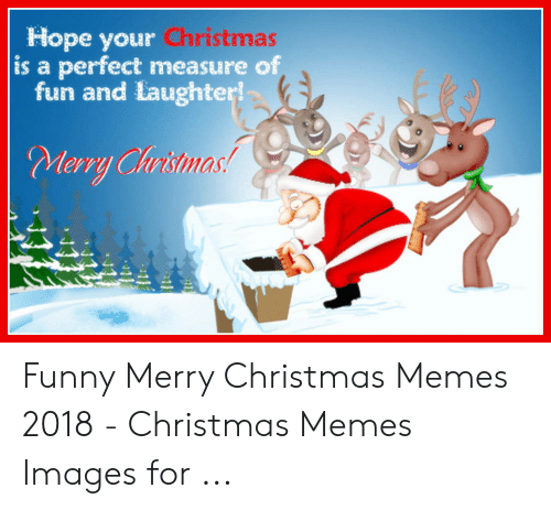 Christmas, Funny, and Memes: Hope your Christmas  is a perfect measure of  fun and laughter!  Merry Christma  tristmas Funny Merry Christmas Memes 2018 - Christmas Memes Images for ...