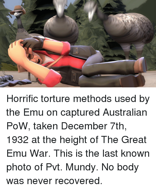 emu: Horrific torture methods used by the Emu on captured Australian PoW, taken December 7th, 1932 at the height of The Great Emu War. This is the last known photo of Pvt. Mundy. No body was never recovered.