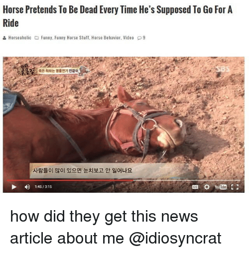 Funny, Memes, and News: Horse Pretends To Be Dead Every Time He's Supposed To Go For A  Ride  & Horse aholic Funny. Funny Horse Stuff, Horse Behavior, Video P9  4 1:45/ 315 how did they get this news article about me @idiosyncrat