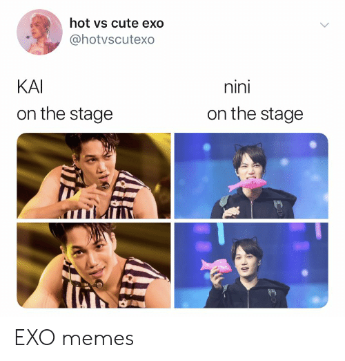 Cute, Memes, and Exo: hot vs cute exo  @hotvscutexo  nini  KAI  on the stage  on the stage EXO memes
