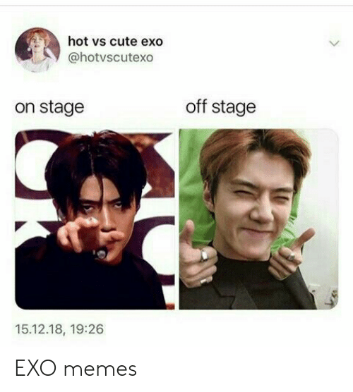 Cute, Memes, and Exo: hot vs cute exo  @hotvscutexo  off stage  on stage  15.12.18, 19:26 EXO memes