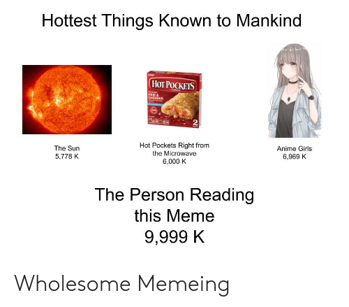 Memeing: Hottest Things Known to Mankind  НоT РОСКЕIS  HAM &  CHEDDAR  2  Hot Pockets Right from  the Microwave  The Sun  Anime Girls  5,778 K  6,969 K  6,000 K  The Person Reading  this Meme  9,999 K Wholesome Memeing