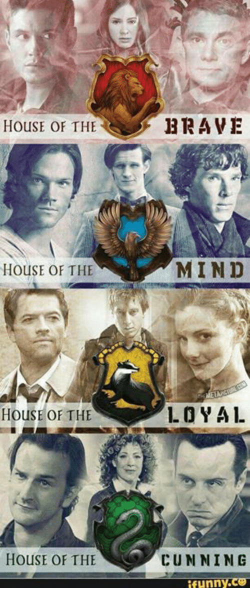 Funny, Memes, and Brave: HOUSE OF THE  BRAVE  HOUSE OF THE  MIND  HOUSE OF THE  LO YAL  HOUSE OF THE  CUNNING  funny.ce