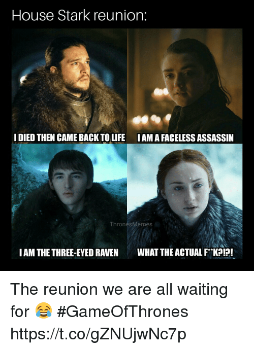 iama: House Stark reunion:  I DIED THEN CAME BACK TO LIFE IAMA FACELESS ASSASSIN  ThronesMemes  IAM THE THREE-EYED RAVENWHAT THE ACTUAL FK! The reunion we are all waiting for 😂 #GameOfThrones https://t.co/gZNUjwNc7p
