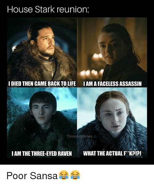 Memes, House, and Raven: House Stark reunion:  IDIED THEN CAME BACKTOLIFE IAM A FACELESS ASSASSIN  ThronesMemes  IAM THE THREE-EYED RAVEN WHAT THE ACTUAL F KPI?! Poor Sansa😂😂