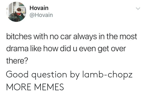 Dank, Memes, and Target: Hovain  @Hovain  bitches with no car always in the most  drama like how did u even get over  there? Good question by lamb-chopz MORE MEMES