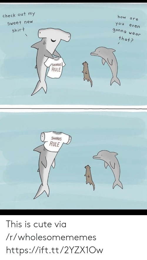 Sharks: how  are  check out my  You  even  9onna we ar  Sweet new  shirt  that?  SHARKS  RULE  SHARKS  RULE This is cute via /r/wholesomememes https://ift.tt/2YZX1Ow