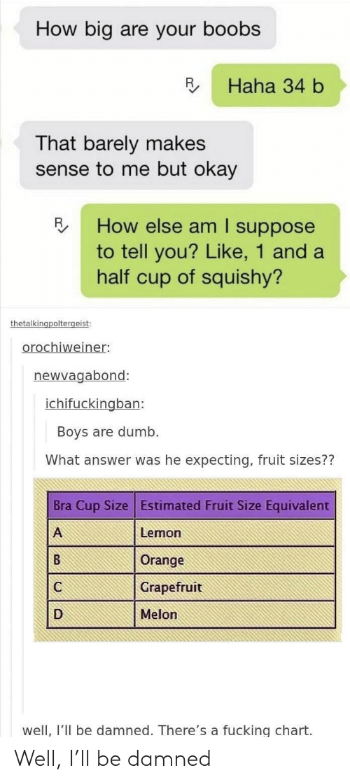 squishy: How big are your boobs  R Haha 34 b  That barely makes  sense to me but okay  How else am I suppose  to tell you? Like, 1 and a  half cup of squishy?  oroc  el  newvagabond:  ban:  Boys are dumb.  What answer was he expecting, fruit sizes??  Bra Cup Size Estimated Fruit Size Equivalent  Lemon  Orange  Grapefruit  Melon  well, I'II be damned. There's a fucking chart. Well, I'll be damned