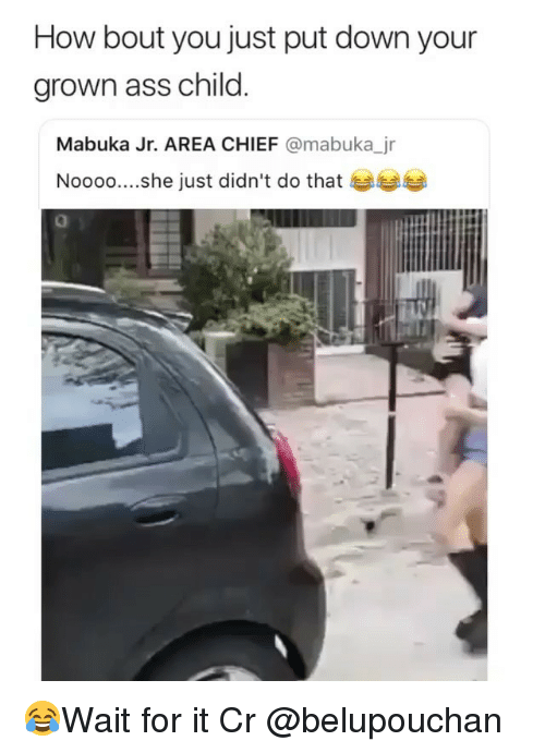 Ass, Memes, and 🤖: How bout you just put down your  grown ass child  Mabuka Jr. AREA CHIEF @mabuka_jr  Noooo....she just didn't do that  0 😂Wait for it Cr @belupouchan
