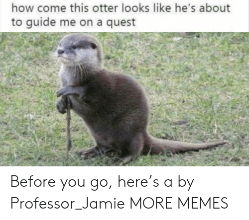 Dank, Memes, and Target: how come this otter looks like he's about  to guide me on a quest Before you go, here's a by Professor_Jamie MORE MEMES