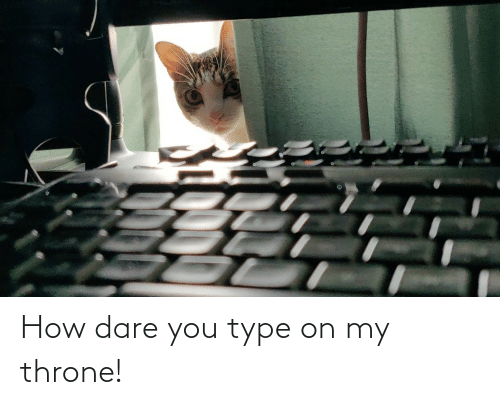type: How dare you type on my throne!