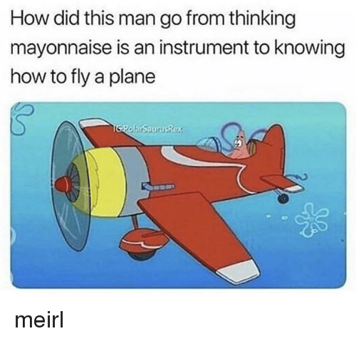 How To, MeIRL, and How: How did this man go from thinking  mayonnaise is an instrument to knowing  how to fly a plane meirl