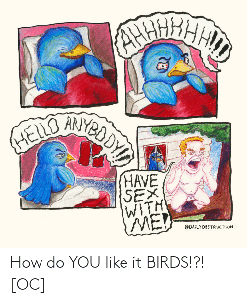 You Like It: How do YOU like it BIRDS!?! [OC]