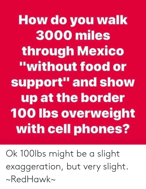 """Food, Memes, and Mexico: How do you walk  3000 miles  through Mexico  """"without food or  support"""" and show  up at the border  100 lbs overweight  with cell phones? Ok 100lbs might be a slight exaggeration, but very slight. ~RedHawk~"""
