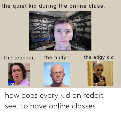 Every: how does every kid on reddit see, to have online classes