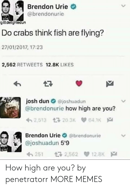 how high: How high are you? by penetratorr MORE MEMES