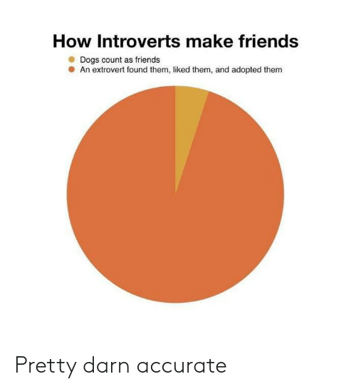 Make Friends: How Introverts make friends  Dogs count as friends  An extrovert found them, liked them, and adopted them Pretty darn accurate