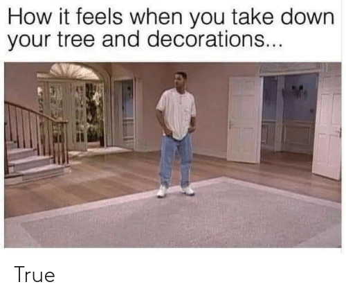 decorations: How it feels when you take down  your tree and decorations... True