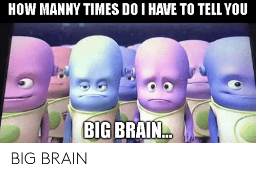 Brain, How, and Big: HOW MANNY TIMES DO I HAVE TO TELL YOU  BIG BRAIN... BIG BRAIN