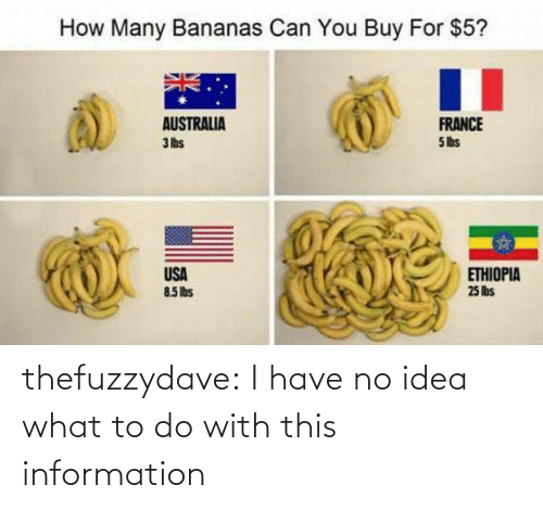 Tumblr, Australia, and Blog: How Many Bananas Can You Buy For $5?  AUSTRALIA  3 lbs  FRANCE  5 lbs  USA  85Ibs  ETHIOPIA  25 lis thefuzzydave: I have no idea what to do with this information