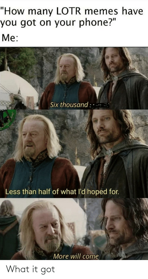 """Lotr Memes: """"How many LOTR memes have  you got on your phone?""""  Me:  Six thousand : ..  Less than half of what l'd hoped for.  More will come What it got"""