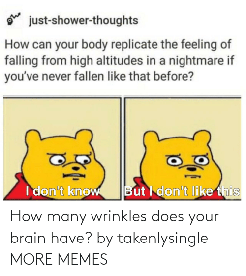 Brain: How many wrinkles does your brain have? by takenlysingle MORE MEMES