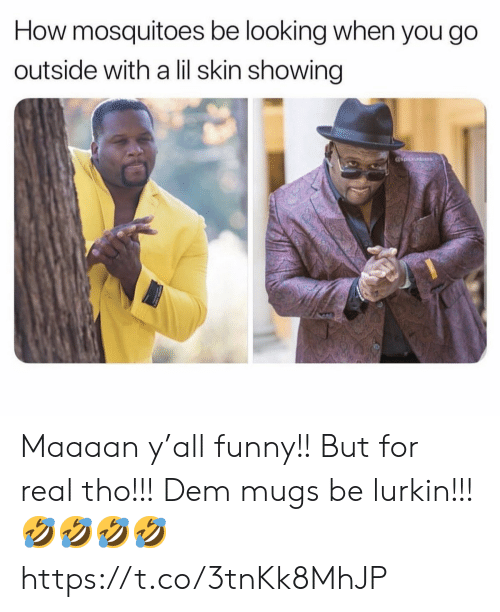 Funny, Memes, and 🤖: How mosquitoes be looking when you go  outside with a lil skin showing  spiceadams Maaaan y'all funny!! But for real tho!!! Dem mugs be lurkin!!! 🤣🤣🤣🤣 https://t.co/3tnKk8MhJP