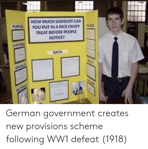 german government: HOW MUCH SAWDUST CAN  YOU PUT IN A RICE CRISPY  TREAT BEFORE PEOPLE  NOTICE  PURPOSE  AVIT  HYPOTHESS  DATA German government creates new provisions scheme following WW1 defeat (1918)