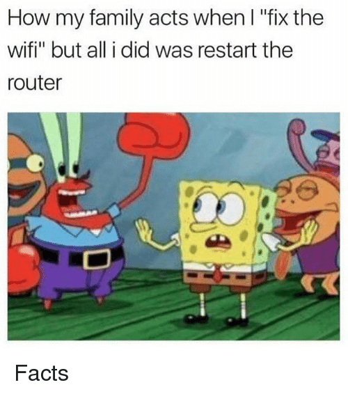 "Wifie: How my family acts when l ""fix the  wifi"" but all i did was restart the  router Facts"