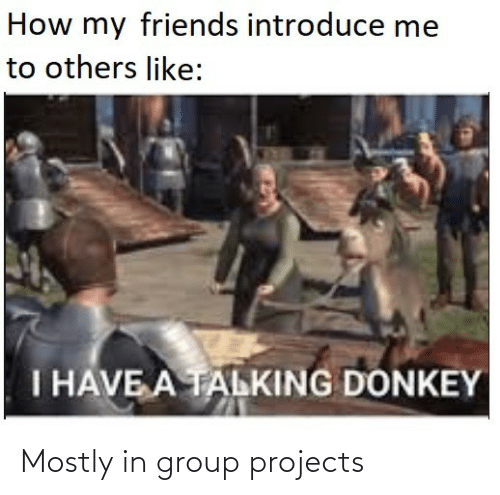 others: How my friends introduce me  to others like:  I HAVE A TALKING DONKEY Mostly in group projects