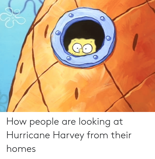 Hurricane Harvey: How people are looking at Hurricane Harvey from their homes