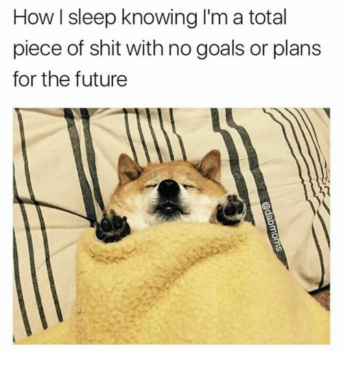 no goal: How sleep knowing I'm a total  piece of shit with no goals or plans  for the future