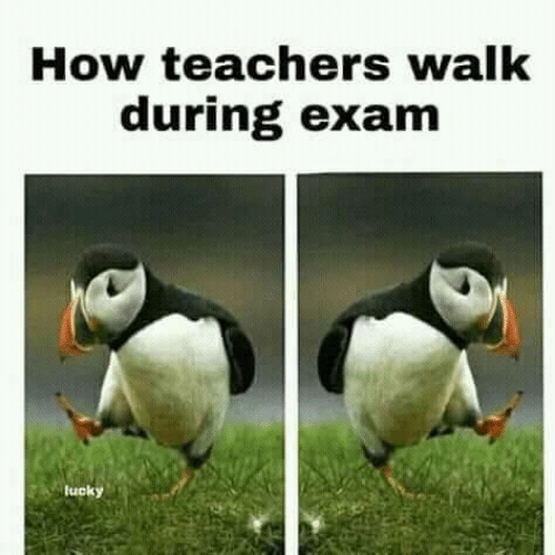 How, Teachers, and Exam: How teachers walk  during exam  tucky