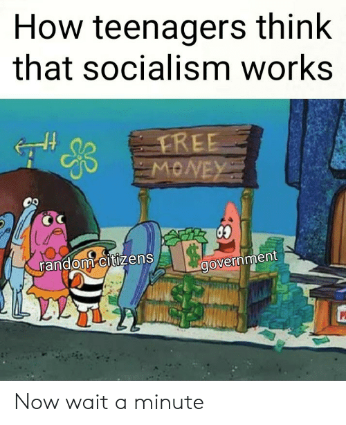 Socialism: How teenagers think  that socialism works  random citizens  government Now wait a minute