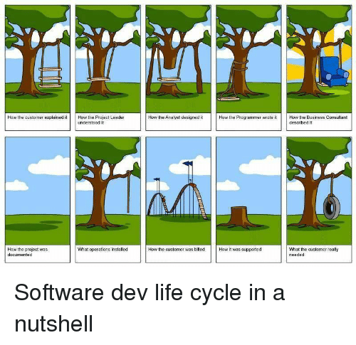 Analyst: How the customer explained itHow the Project Leader  How the Analyst designed it  How the Programmer wrote it  How the Business Consultant  described it  understood it  What operations installed  How the project was  documented  What the customer really  needed  How the customer was billed How it was supported Software dev life cycle in a nutshell