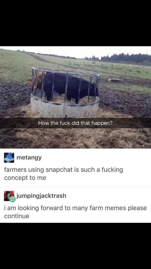 Fucking, Memes, and Snapchat: How the fuck did that happen?  metangy  farmers using snapchat is such a fucking  concept to me  jumpingjacktrash  i am looking forward to many farm memes please  continue