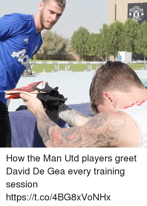 Soccer, How, and Man Utd: How the Man Utd players greet David De Gea every training session  https://t.co/4BG8xVoNHx