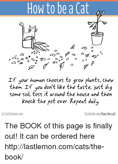 Books, Facebook, and Finals: How to be a Cat  6  a  If your human chooses to grow plants, chew  them. If you don't like the taste, just dig  some soil, toss it around the house and then  knock the pot over. Repeat daily.  (c) lastlemon.com  facebook.com/how beacat The BOOK of this page is finally out! It can be ordered here http://lastlemon.com/cats/the-book/
