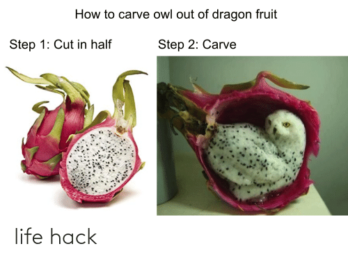 Life, Life Hack, and How To: How to carve owl out of dragon fruit  Step 1: Cut in half  Step 2: Carve life hack