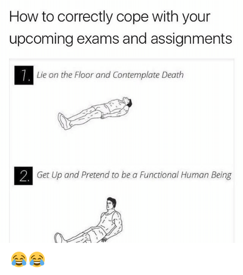 contemplate: How to correctly cope with your  upcoming exams and assignments  Lie on the Floor and Contemplate Death  2. Get Up and Pretend to be a Functional Human Being 😂😂