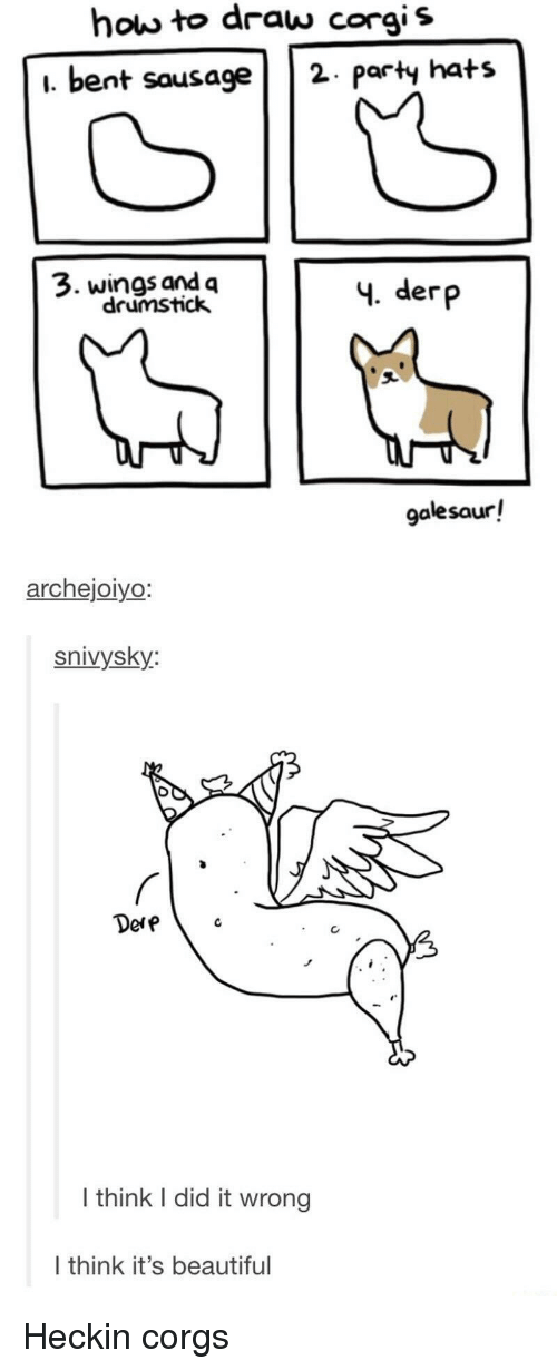 derp: how to draw corgis  i. bent sausage2 paty hats  3. wings and q  drumstick  4. derp  galesaur!  archejoiyo  snivysky:  Dere  I think I did it wrong  I think it's beautiful Heckin corgs