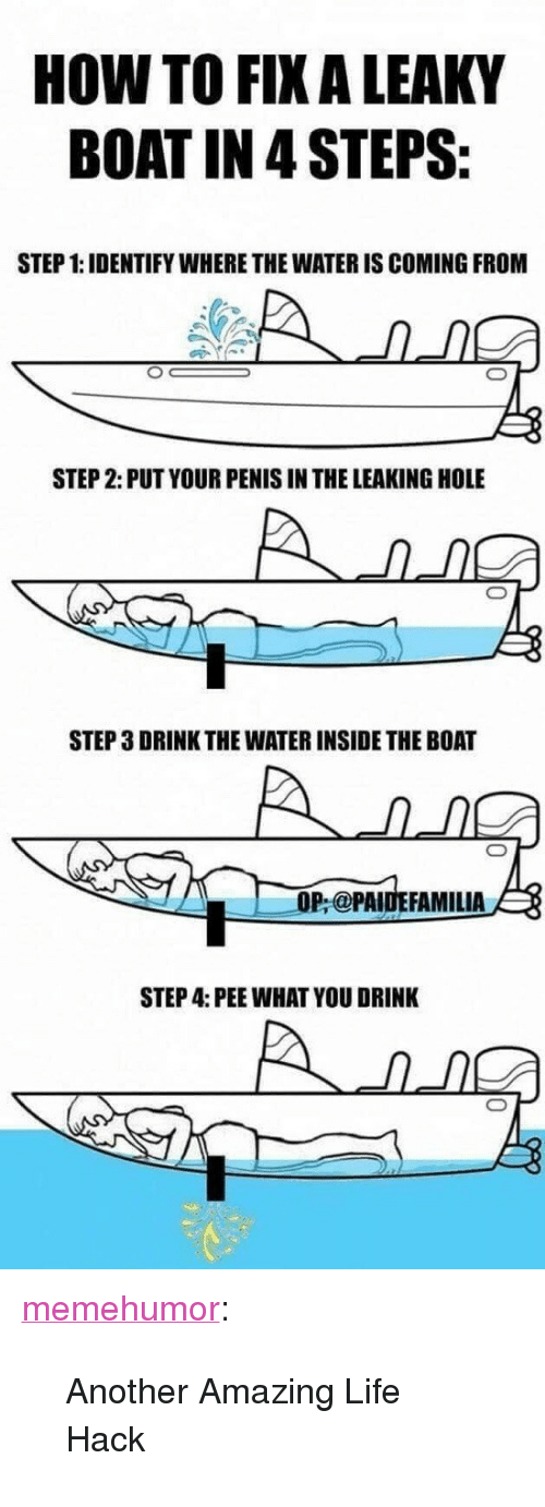 """Life, Tumblr, and Life Hack: HOW TO FIX A LEAKY  BOAT IN 4 STEPS  STEP 1: IDENTIFY WHERE THE WATER IS COMING FROM  STEP 2: PUT YOUR PENIS IN THE LEAKING HOLE  STEP 3 DRINK THE WATER INSIDE THE BOAT  OP @PAIDEFAMILIA  STEP 4: PEE WHAT YOU DRINK <p><a href=""""http://memehumor.net/post/174226319403/another-amazing-life-hack"""" class=""""tumblr_blog"""">memehumor</a>:</p>  <blockquote><p>Another Amazing Life Hack</p></blockquote>"""